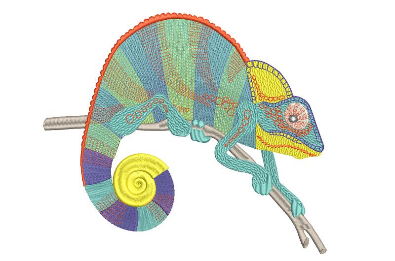 Free_Designs_Images_800x530_Chameleon_2
