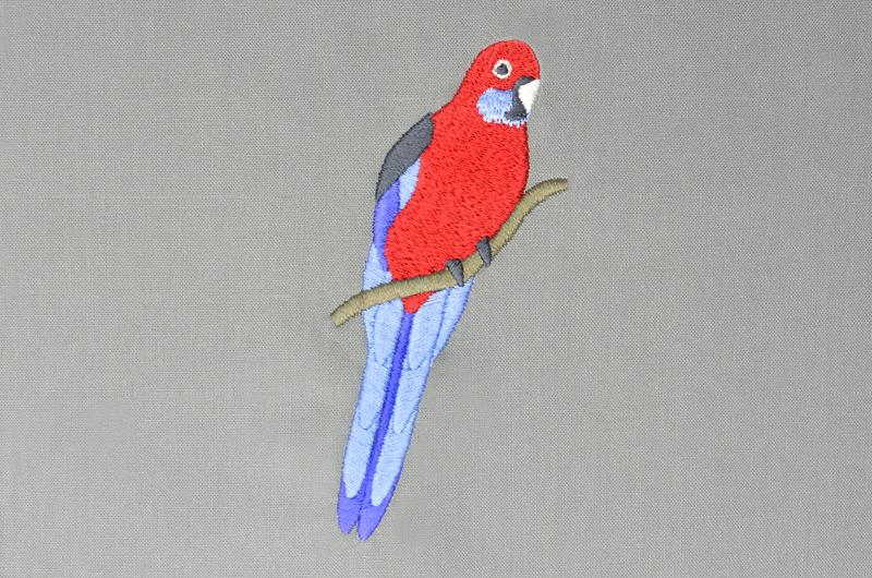 Free_Designs_Images_800x530_Crimson_Rosella_1