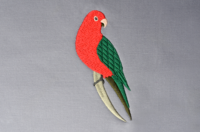 Free_Designs_Images_800x530_King Parrot_1